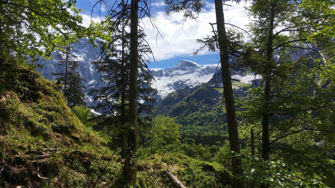 Eine kleine, feine Bergtour mit Ausblick und Badefreuden!