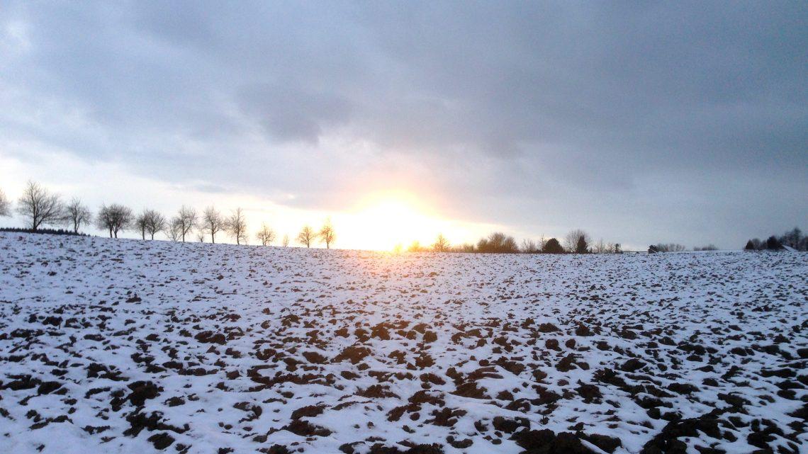Wenn's zu Lichtmess stürmt und schneit …