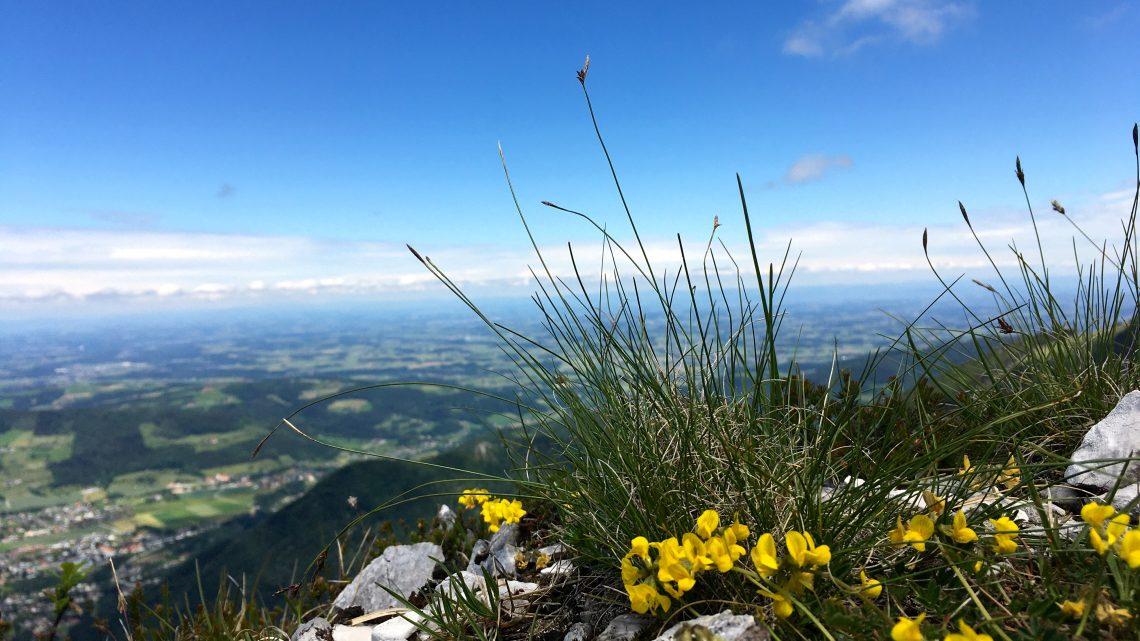 Eine Genußtour über den Berg.