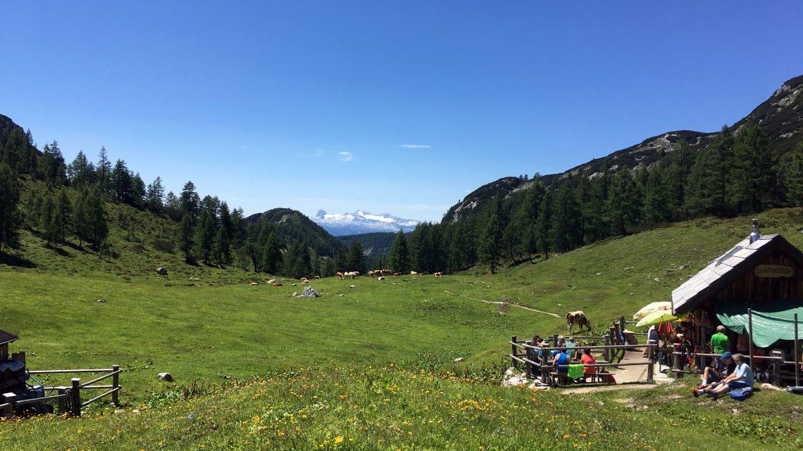 Über d'Alma – eine Runde über die Tauplitz-Alm